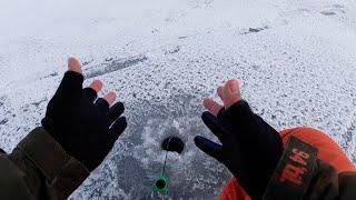 КАК ЖИВАЯ САМАЯ РЕАЛИСТИЧНАЯ ПРИМАНКА Зимняя рыбалка по первому льду на самодельную мормышку