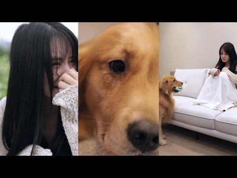 Sometime Dog More Loyal Than Human🙃