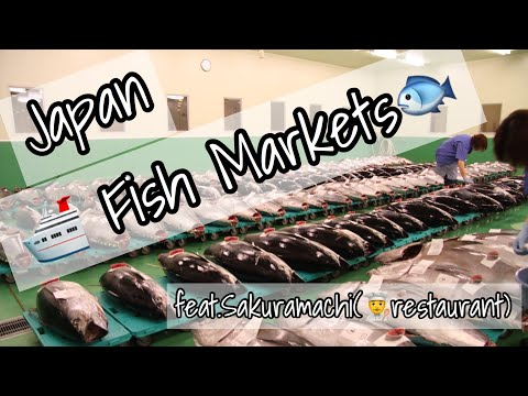 サクラマチ 北部市場調査 〜Fish market at North side Nagoya Japan〜