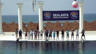 Sealanya Dolphine Dance