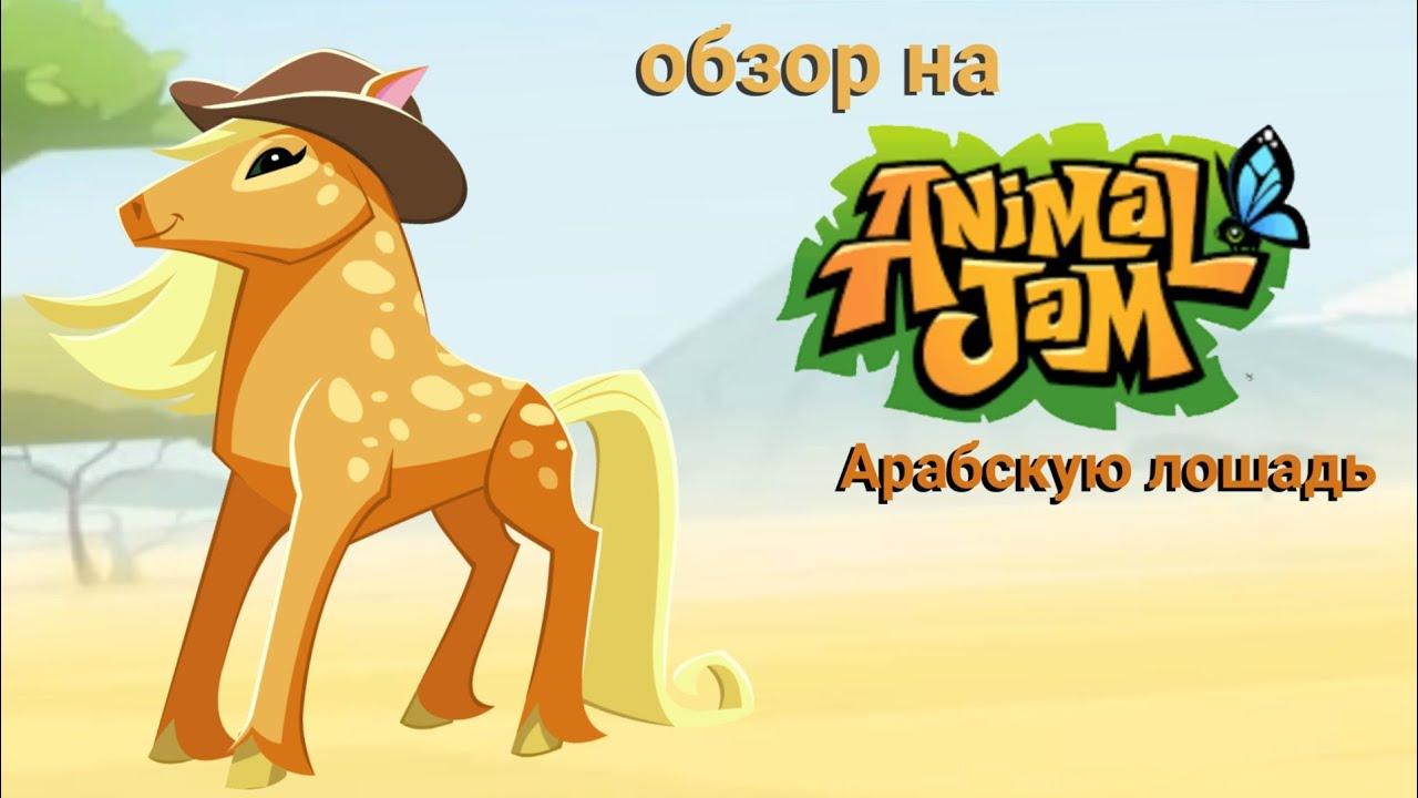 #animaljam Обзор на АРАБСКУЮ ЛОШАДЬ в энимал джем/Review on ARABIAN HORSE in animal jam