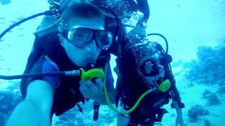 SCUBA Diving Egypt Red Sea - Underwater Video  Скуба Дайвинг Египет Красное Море - Подводное Видео.