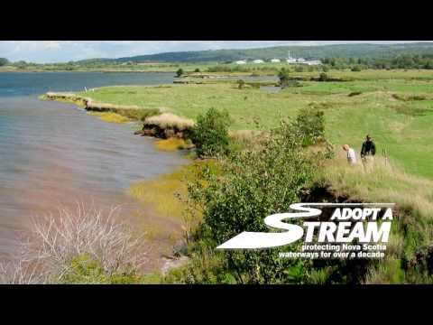 NSLC (Nova Scotia Liquour Corporation) - Adopt-a-Stream sponsorship