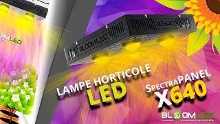 Présentation Lampe LED horticole - SpectraPANEL X640 - BloomLED