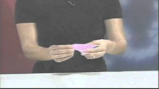 How To Make Origami Tutorial 1 - Dove