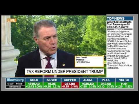 Senator David Perdue On Bloomberg TV