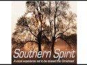 christmas carollers - SOUTHERN SPIRIT