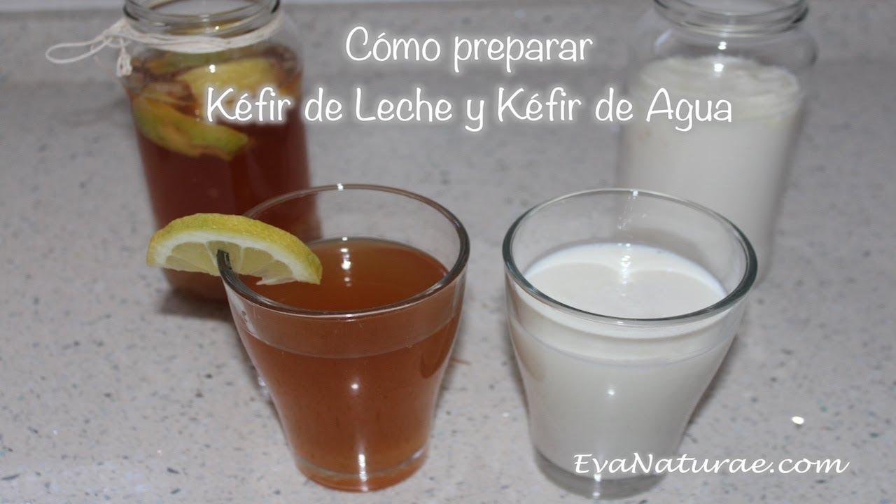 Kefir de agua y sus propiedades