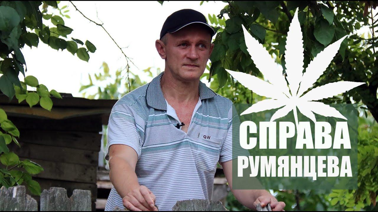 Видеоуроки выращивание марихуаны гровинг конопли