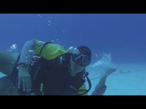 Cayman Eco Divers, Coral Nursery