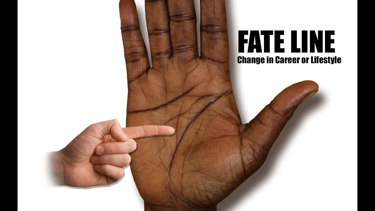 Fate Line, Career/Job Line, Luck Line Palmistry - Chinese ...
