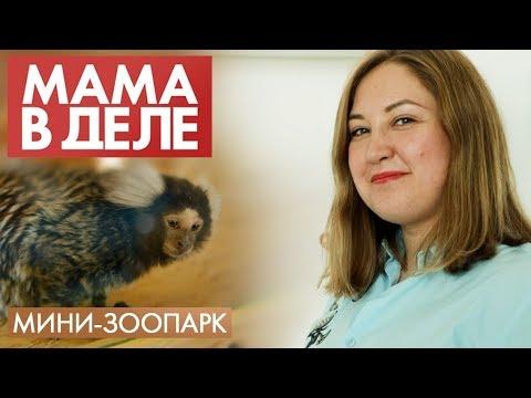 Ксения Федорова | Мини-зоопарк | Мама в деле #22 (2020)