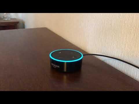 日本語Amazon Echo Dotを使ってみた