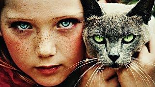 11 научных фактов, которые помогут вам понять кошку #ФАКТЫ | Habiq Tube