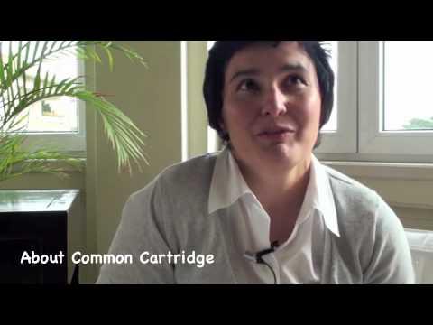 ASPECT Teacher Interview / Miguela