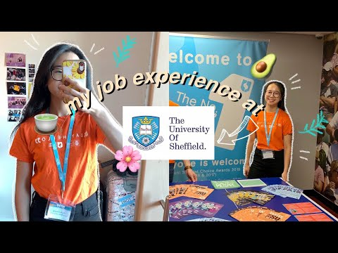 How I Became A Student Ambassador For The University Of Sheffield