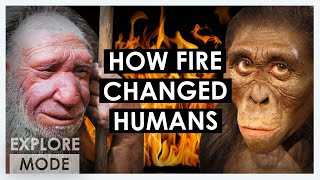 How humans tamed fire  | How fire changed humanity