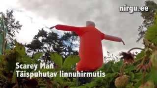 Scarey Man video