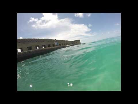 Snorkeling at Fort Jefferson