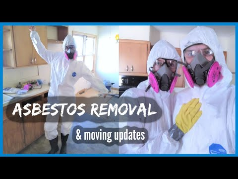 asbestos-removal,-moving,-and-renovation-updates-//-downsizing-to-become-debt-free-[ep.-7]