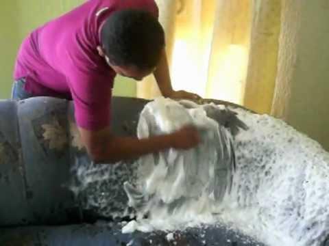 Maquina de espuma para el lavado de tapicer a muebles y - Como lavar una alfombra en casa ...