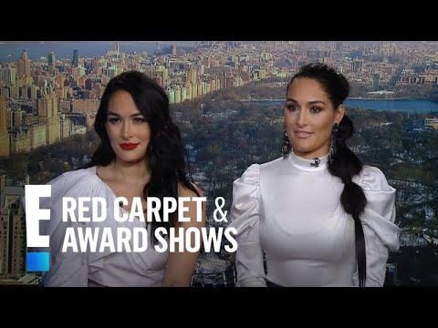 "Nikki Bella Talks Romance Rumors With ""DWTS"" Pro Artem 