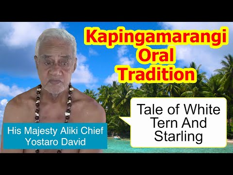 Tale of white tern and starling, Kapingamarangi Atoll
