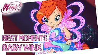 Winx Club - Baby Winx Club
