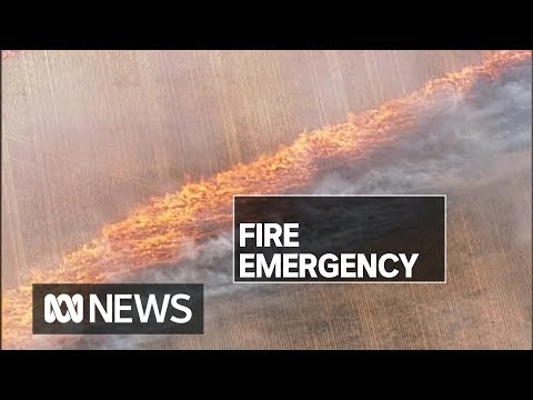 SA Bushfires Burning Out Of Control After Day Of Catastrophic Conditions | ABC News