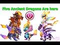 New Five Ancient Dragons-Dragon Mania Legends  | Ancient Dragons |  DML