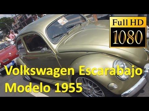 Volkswagen escarabajo modelo 1955 autos clasicos y for Modelos de sofas clasicos