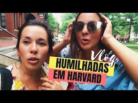 ATÉ EM HARVARD SURGE UM LOUCO - Vlog Boston Massachusetts