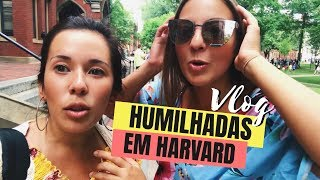 Baixar ATÉ EM HARVARD SURGE UM LOUCO - Vlog Boston, Massachusetts