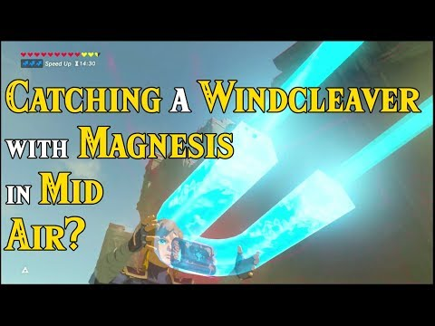 Catching a WINDCLEAVER with Magnesis in Mid Air? Did You Know in Zelda Breath of the Wild