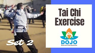 Tai Chi Exercise Set 2: Improving wellbeing and mental health