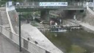 大雨で増水した都賀川(大石川) 神戸市灘区 2008/07/28