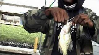 CALIFORNIA DELTA TOURNAMENT REPORT PLUS CRAPPIES- FISHING WITH RIPPN LIPPS
