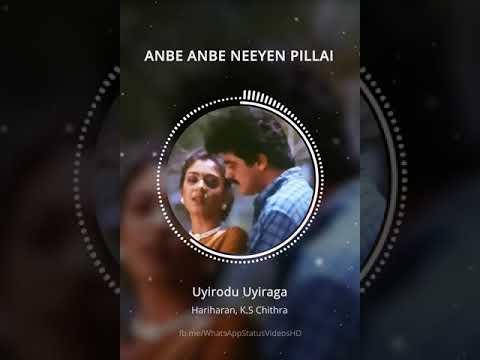 Anbe Anbe Neeyen Pillai - Uyirodu Uyiraga - WhatsApp Status Videos HD