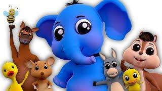 Звуковая песня животных | Детская песня | Animal Sounds For Kids | Learn Animals | Educational Video