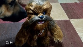 Dogs react to Star Wars Ultimate Co pilot Chewie Interactive Plush Toy