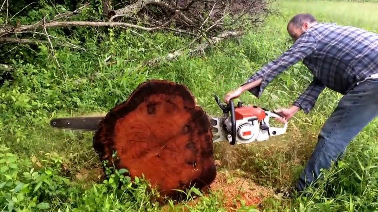 Mastermind Meets The Stihl 090AV | Page 6 | Outdoor Power