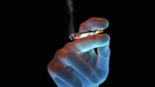 Http://www.nucleushealth.com/ - this 3d medical animation created by nucleus media shows the health risks of smoking tobacco. id#: anh12071 transcrip...