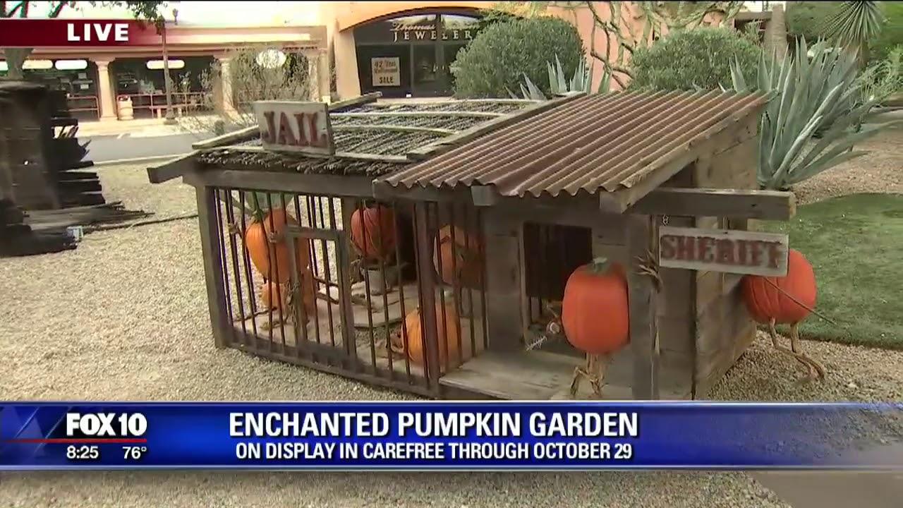 Carefree Enchanted Pumpkin Garden - YouTube