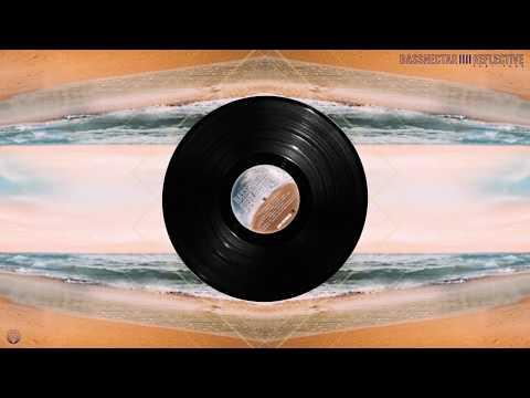 Bassnectar - Undercover ◈ [Reflective Part 4] Mp3