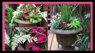 ~DIY~ Mixed Shade Garden Planter Pot's~