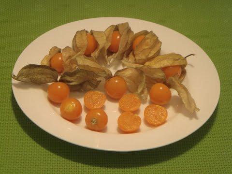 How to Eat Physalis Peruviana, Cape Gooseberry, Golden Berry, Inca Berry