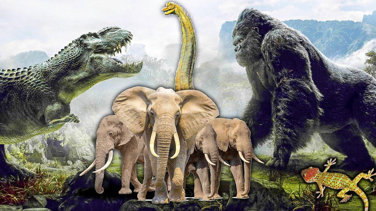Jaki Jest Problem z Wielkimi Zwierzętami?   King Kong, Galopujący Mamut, Słoń, Brachiozaur