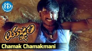 Yagnam Movie - Chamak Chamakmani Video Song || Gopichand, Sameera Banerjee || Mani Sharma