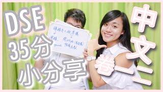 【DSE備戰】35分小分享!中文科點溫好?(卷一二) Cherry Study