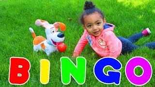 Bingo Song   Leah Play's Time Nursery Rhymes & Kids Songs